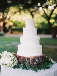 simple and natural wedding cake on a tree trunk cake stand with and emerald green leaves