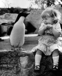 Penguin and a little girl