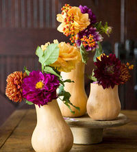 i like the gourds with purple flowers.