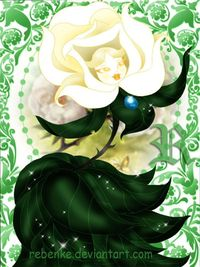 Alice in Wonderland: The White Rose