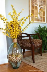 Forsythia arrangement with wine corks- + how to force forsythia indoors! www.sandandsisal.com