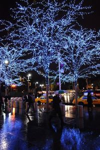 Blue Christmas in NY