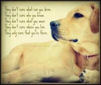 Dog's care that your on there.