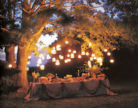 Their threaded tops make them easy to hang from the rafters to create sculptural lanterns and chandeliers.