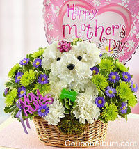 1800 Flowers Gift Coupon: 25% Off!