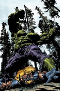 Hulk Vs Wolverine by Mike Deodato Jr