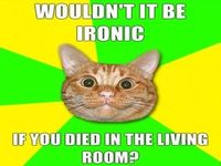 funny meme Wouldnt It Be Ironic- Lol Image